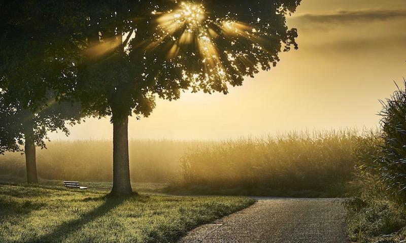 24 SEZONY SŁONECZNE, XIII – LI QIU POCZĄTEK JESIENI